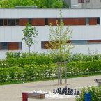 Kompakter und schlichter Systembau - Kooperationseinrichtung in München