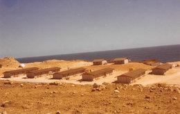 saebu-Oman.jpg